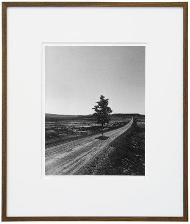 Mandla Reuter, Image 80