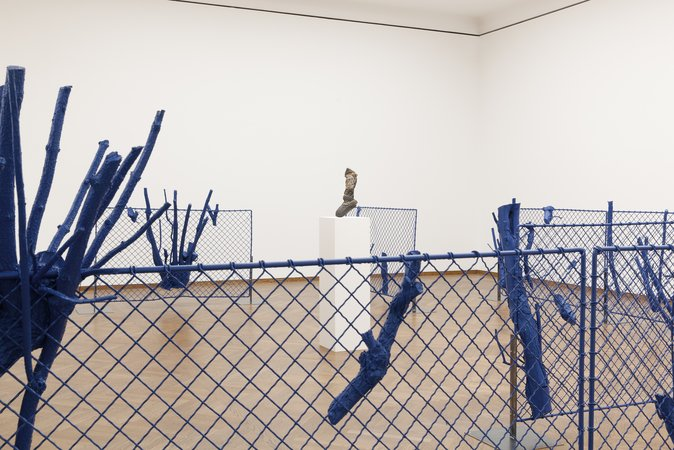 Christian Kosmas Mayer, Image 24