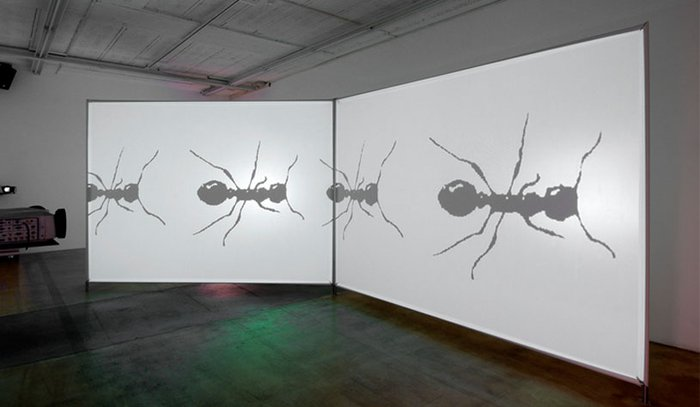 Peter Kogler, Image 88