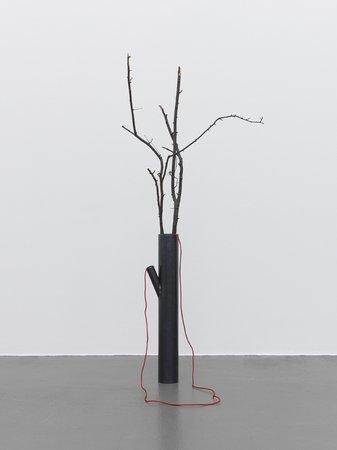 Sunah Choi, Image 19