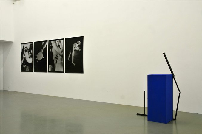 Wolfgang Breuer, Kerstin Cmelka, Tom Humphreys, Kim Nekarda: Schnecke, Vogel, Katze und Qualle, 12.03. - 29.03.2008, Image 3