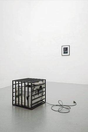 Sunah Choi, Image 48
