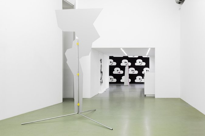 Michael Hakimi: Nuts should chew themselves!, 10.04–31.05.2013, Image 7
