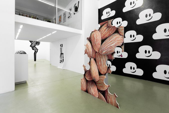 Michael Hakimi: Nuts should chew themselves!, 10.04–31.05.2013, Image 4