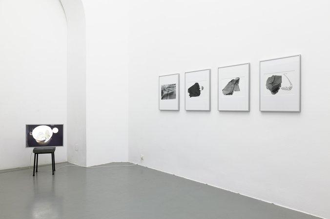 Gerald Domenig, Image 55