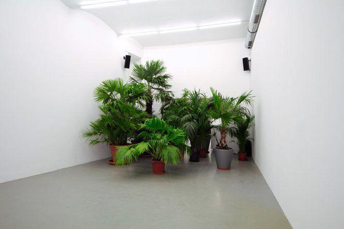 Mandla Reuter, Image 57